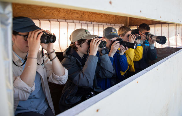 Virtual Birding Camp for Teens