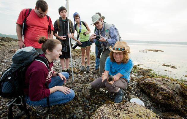 Marine Natural History for Teens