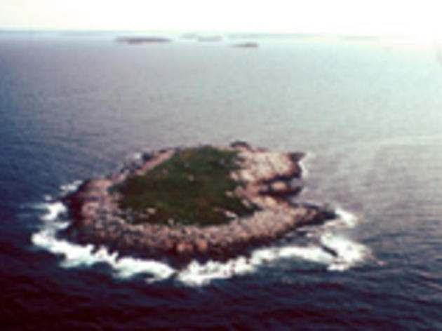 Eastern Egg Rock