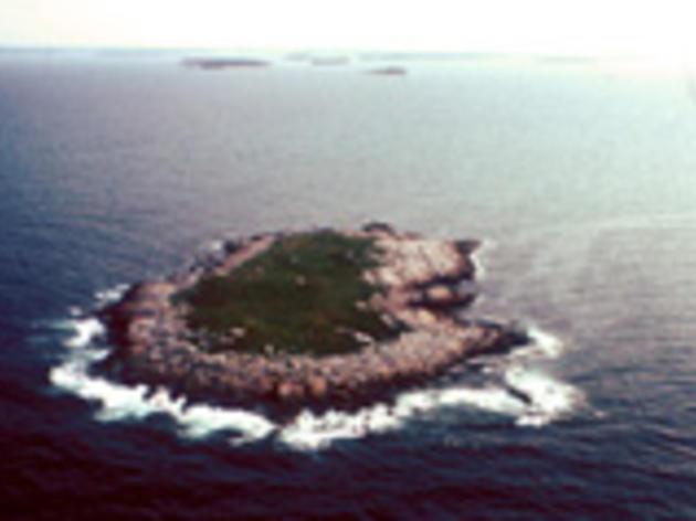 Eastern Egg Rock