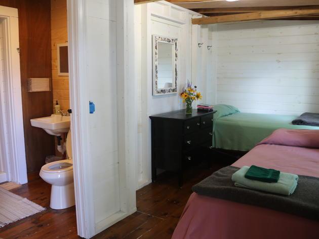 Guillemot Room